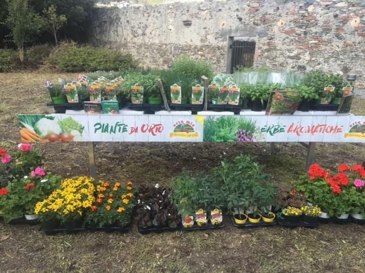 piante-agricola-genovese-villa-sauli